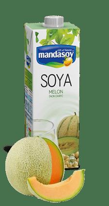soy-milk-melon